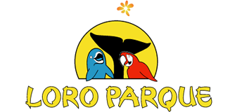Tropic car rental Tenerife, Alquiler de coches en Tenerife. Loro Park